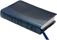 KJV Personal Concord Reference Bible, Imitation leather,  two-tone blue  -