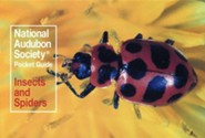 National Audubon Society Pocket Guide to Familiar Insects and Spiders