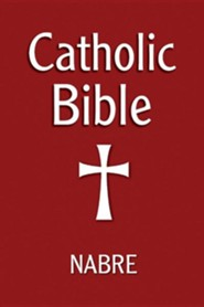 NABRE Catholic Bible - Burgundy