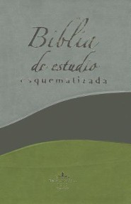 Biblia de Estudio Esquematizada-RVR 1960, Imitation Leather, Grey/Black/Green