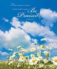Daisies Summer Bulletins, Large (Package of 50)