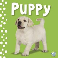 Busy Baby: Touch & Feel Puppy  -     By: Joanna Bicknell