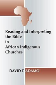 Reading and Interpreting the Bible in African Indigenous Churches  -     By: David Tuesday Adamo