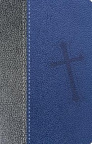 Santa Biblia Promesas-NTV, Imitation Leather, Blue/Gray