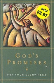 God's Promises  - Slightly Imperfect   -