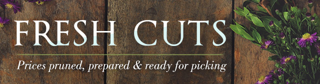 Fresh Cuts