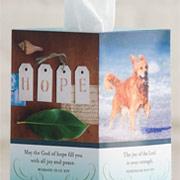 Tissue Box Greeting Cards