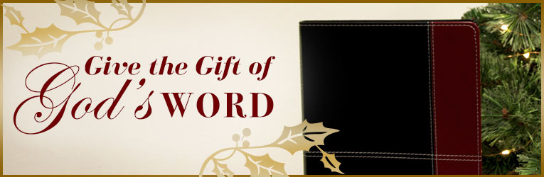 Gift Bibles for Christmas