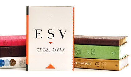 More English Standard Version Bibles