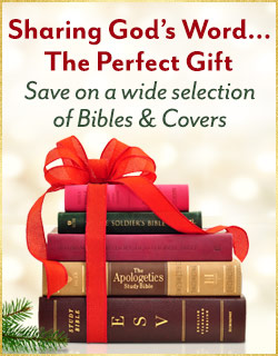 Bibles and Covers