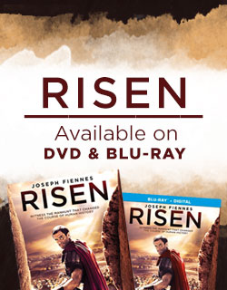 Risen Available Now
