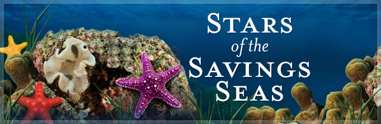 Stars of the Savings Seas