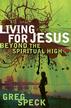 Living for Jesus Beyond the Spiritual High - eBook