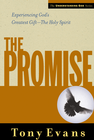 more information about The Promise - eBook
