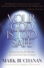 more information about Your God is Too Safe - eBook
