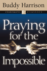 more information about Praying for the Impossible - eBook