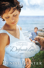 more information about Driftwood Lane: A Nantucket Love Story - eBook