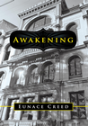 more information about Awakening - eBook