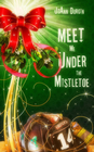 Meet Me Under the Mistletoe: Novelette - eBook