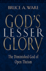 more information about God's Lesser Glory: The Diminished God of Open Theism - eBook