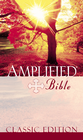 more information about Amplified Bible - eBook