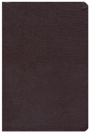 NAS New Inductive Study Bible, Bonded leather, Burgundy   -              By: Kay Arthur