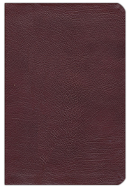 NAS New Inductive Study Bible, Genuine leather, Burgundy   -     By: Kay Arthur