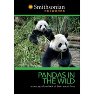 Pandas In the Wild   -
