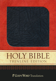 God's Word Thinline Bible, Bonded leather, charcoal  -