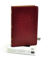 HCSB UltraThin Reference Bible Genuine Leather, Burgundy   -