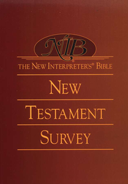 The New Interpreter's Bible New Testament Survey  -