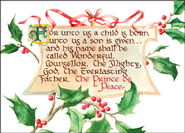 Holly Banner Deluxe Box Christmas Cards, Box of 20  -
