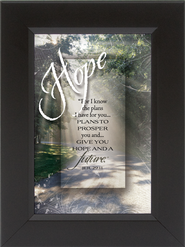 Hope, For I Know the Plans I Have For You Framed Print  -