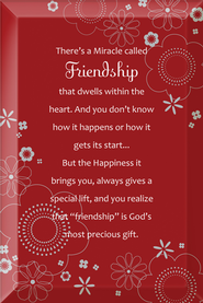There's a Miracle Called Friendship Plaque  -