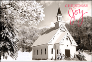 Christmas Joy Black and White Christmas Cards, Box of 18  -