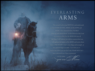 Everlasting Arms Mounted Print  -     By: David Stoecklein