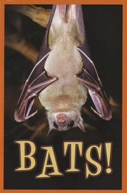 Bats!: Pack of 25 Tracts  -