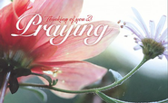 Praying for You (Romans 15:13) Postcards, 25  -