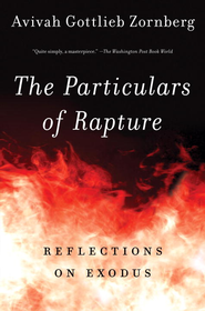 The Particulars of Rapture: Reflections on Exodis - eBook  -     By: Avivah Gottlieb Zornberg
