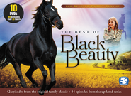The Best of Black Beauty, 10-DVD Pack   -