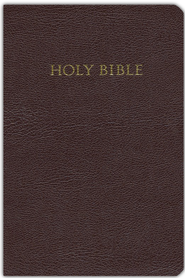 KJV Study Bible Bonded leather, burgundy - Slightly Imperfect  -
