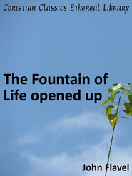 Fountain of Life Opened Up - eBook  -     By: John Flavel