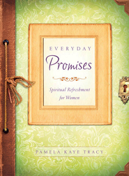 Everyday Promises - eBook  -     By: Pamela Kaye Tracy