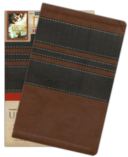 NKJV UltraSlim Bible with DVD Imitation Leather-- chocolate   -