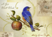 Songbirds Get Well Cards, Box of 12  -              By: Sandy Clough