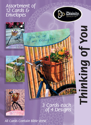 Bicycles Thinking of You Cards, Box of 12  -