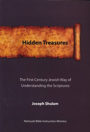 Hidden Treasures  -     By: Joseph Shulam