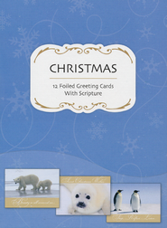 Christmas Friends Christmas Cards, Box of 12  -