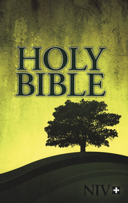 NIV Outreach Bible   -