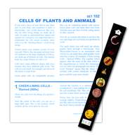 Cells of Plants and Animals   -